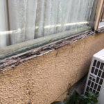 Building and Pest Inspections Gold Coast.Windows - Rotted timbers
